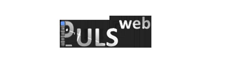 pulseWeb  - הקמת אתרים